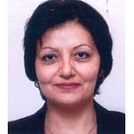 Arabic-Legal-Aid-Translator-Interpreter